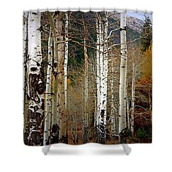 Aspen In The Rockies Shower Curtain by Lynn Sprowl