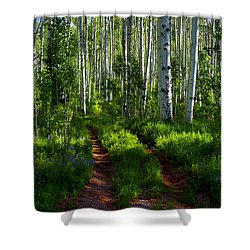 Aspen Lane Shower Curtain by Jeremy Rhoades