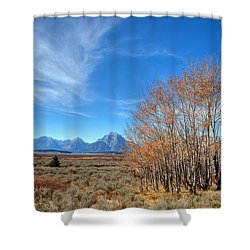 Shower Curtain featuring the photograph Aspen Last Stand  by David Andersen