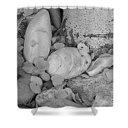 Aspen Leaves On The Rocks - Black And White Shower Curtain