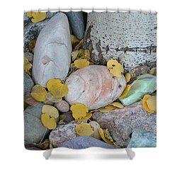 Aspen Leaves On The Rocks Shower Curtain