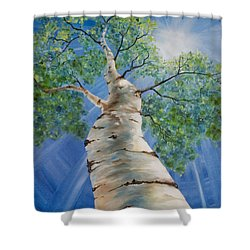 Shower Curtain featuring the painting Aspen Light by Melinda Cummings