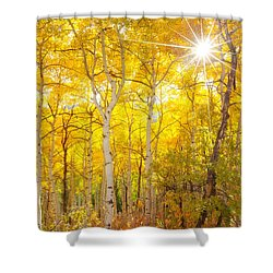 Aspen Morning Shower Curtain by Darren  White