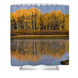 Shower Curtain featuring the photograph Aspen Reflection by Sonya Lang