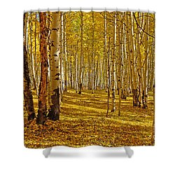 Aspen Sanctuary Shower Curtain