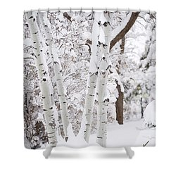 Aspen Snow Shower Curtain