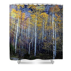 Shower Curtain featuring the photograph Aspen Sunset by Karen Shackles
