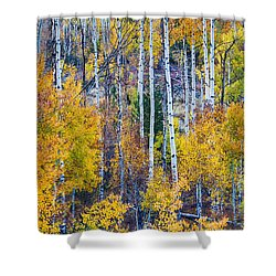 Aspen Tree Magic Cottonwood Pass Shower Curtain by James BO  Insogna