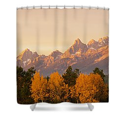 Aspen Trees On A Mountainside, Grand Shower Curtain by Panoramic Images
