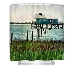Assateague Abandon Shower Curtain