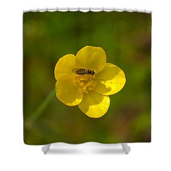 Shower Curtain featuring the photograph Association by Rima Biswas