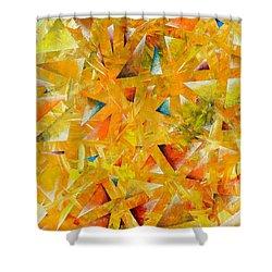 Asterisms Shower Curtain by Regina Valluzzi