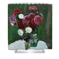 Asters In The First Frosts Shower Curtain