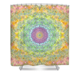 Astral Field Shower Curtain