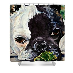 Astro Shower Curtain by Susan Herber