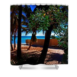 At Dog's Beach In Key West Shower Curtain by Susanne Van Hulst