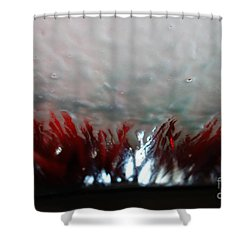 At The Car Wash 4 Shower Curtain