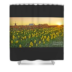 At The Crack Of Dawn Shower Curtain by Nick  Boren
