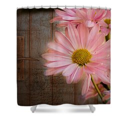 At The Door Shower Curtain