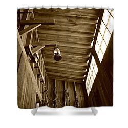 At The Museum - Sepia Shower Curtain
