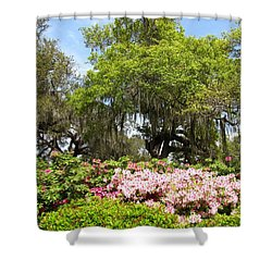 Shower Curtain featuring the photograph At The Park by Beth Vincent