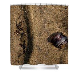 Atres 4 Shower Curtain by Karol Livote