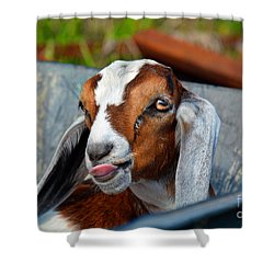 Attitude Is Everything Shower Curtain by Savannah Gibbs