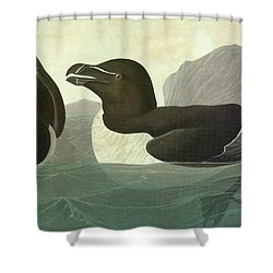 Audubon Razorbill Shower Curtain