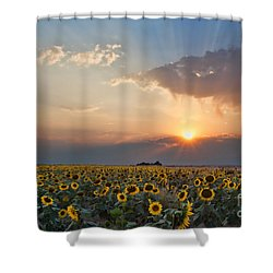 August Dreams Shower Curtain