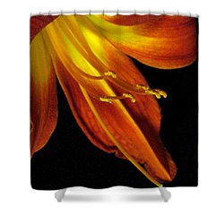 August Flame Glory Shower Curtain