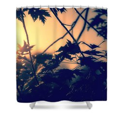 August Memories Shower Curtain by Bob Orsillo