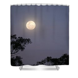 Shower Curtain featuring the photograph August Moon by Evelyn Tambour