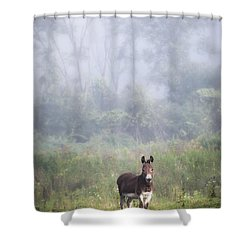 Shower Curtain featuring the photograph August Morning - Donkey In The Field. by Gary Heller