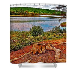 Aunt Betty Pond In Acadia National Park-maine  Shower Curtain by Ruth Hager