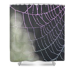Aurora's Web Shower Curtain by Cathie Douglas