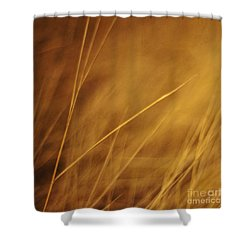 Aurum Shower Curtain by Priska Wettstein