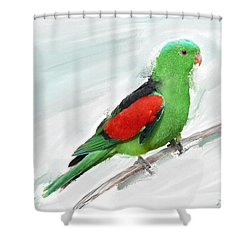 Australian Parrot Shower Curtain