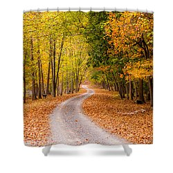 Autum Path Shower Curtain by Melinda Ledsome