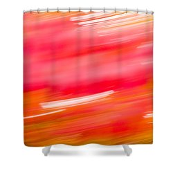 Autumn Abstract Shower Curtain by Shane Holsclaw