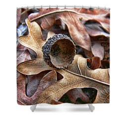 Autumn Acorn And Oak Leaves Shower Curtain by Jennie Marie Schell