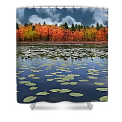 Autumn Across The Pond Shower Curtain by Barbara S Nickerson