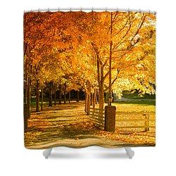 Autumn Alley Shower Curtain by Alexey Stiop