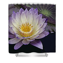Autumn Aquatic Bloom Shower Curtain