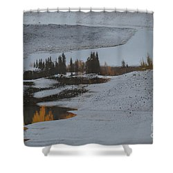 Autumn Arising Shower Curtain