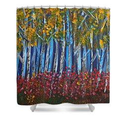 Autumn Aspens Shower Curtain by Donna Blackhall
