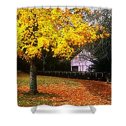 Shower Curtain featuring the photograph Autumn At Old Mill by Rodney Lee Williams