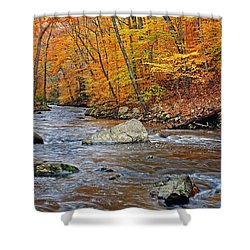 Autumn At The Black River Shower Curtain by Dave Mills