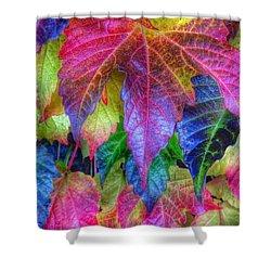 Autumn Bold Shower Curtain by Susan Garren