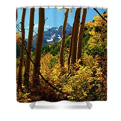 Autumn Brilliance 2 Shower Curtain by Jeremy Rhoades