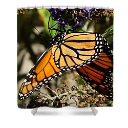 Autumn Butterfly Shower Curtain